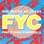 Fine Young Cannibals - She Drives Me Crazy Pop Music Deluxe